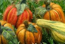 Autumnal crafts / by Gloria Hanaway