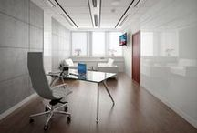 Gabinety - nasze projekty / Offices - our projects