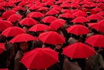 Ravishing Red / by Jyothi Joshi