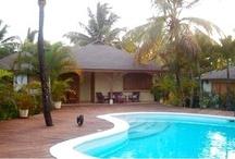 Las Terrenas / El Nido de Las Ballenas Las Terrenas, Dominican Republic (a great getaway - 5 different bungalows for rent…..)