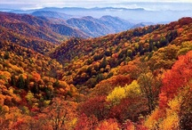 Fall in the Smokies / The beauty and wonder of fall in the Great Smoky Mountains.