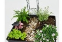 Fairy Gardens and Gnome Homes / For more about fairy gardens, visit my pages: http://virginiaallain.hubpages.com/hub/fairy-gardens-flowers-to-attract-fairies