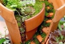 Fairy Garden - Broken Pot Style / I'm fascinated by these creative ways to use a broken pot. For more tips, visit my page on Make a Fairy Garden in a Broken Pot. http://www.squidoo.com/broken-pot
