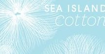 Sea Island Cotton / Refresh yourself! Sea Island Cotton® is inspired by pure white cotton flowing in fresh ocean air.
