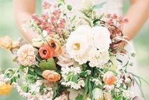 Weddings | Bohemian Wedding