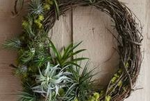 DIY Holiday / DIY decorations, gift ideas, and tips for a more sustainable holiday season