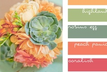 Color Palette / Color combinations that look lovely together