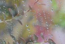 Nature/Rain