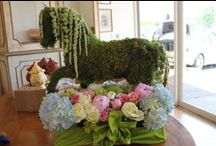 VIP Horse Week  / Western decor and delicious food inspiration for VIP booth at Rodeo  / by Brittany Barreto