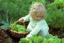 Let's Garden! / by Christine Baldigara