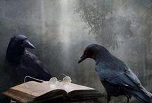 All Black Birds / by Ruth Shupp