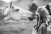 Horse around  / For the best friend who brings us in contact with grace, beauty, spirit and fire.  / by Brittany Barreto