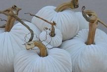 Season: Fall / autumn ; inspiration