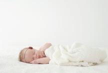 Photography - Maternity/Newborn / by Stephanie Mooney