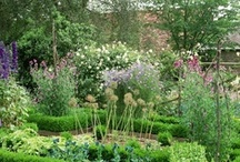 Kitchen Garden / I love Kitchen Gardens