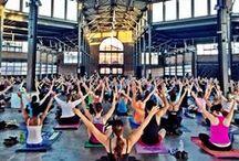 yogi needs some yoga