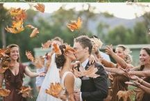 Fall Wedding / Inspiration for the perfect fall wedding / by Swoozie's