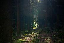 E S C A P E !!!! / Places, Spaces & Nature