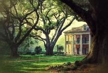 Southern Dreams / by Kelly Conway