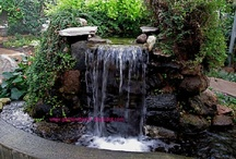 "Backyard Pond Ideas, Fountains & Waterfalls, Water Lilly Pond / Backyard Pond ideas, Waterfalls, Container Ponds, Backyard Wildlife Sanctuary for Birds, Butterflies, Frogs, Rabbits, Raccoon s, Water Features, Fountains,  Water Lilly Pond / by Theresa ""Tess"" Engelhardt"