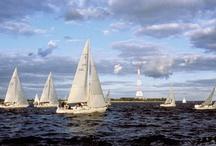 """Maryland & Chesapeake Bay / Maryland Scenery, Chesapeake Bay, Maryland Wildlife, Day trips in Maryland, Things that make Maryland Wonderful, Maryland  blue crabs, Maryland lighthouses, Maryland boats / by Theresa """"Tess"""" Engelhardt"""