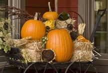 seasons - fall. / by Jessica Clayton