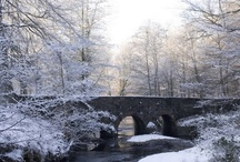 seasons - winter. / by Jessica Clayton