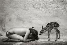| animal | / by Sarah Kieffer | Vanilla Bean