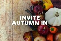 Invite Autumn In / Let fall flavors take over your kitchen. And let Viva® Towels handle the mess.