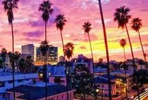 Made in LA / Today, Zevia calls Los Angeles - the city of angels - our home. Here's our homage to our city.