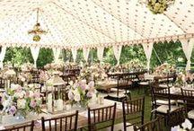 Wedding Ceremony & Reception / by Lauren Ryker