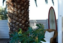beach chic / All of the inspirations for our new store Morley, all on one board.  www.morleydelray.com / by Periwinkle