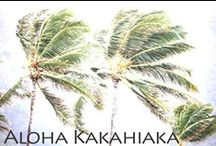 Let's Talk Story / Hawaiian alphabet, words, phrases ~ I like to be able to read & speak some Hawaiian when I'm in Hawaii. / by ~*~ Dianne Jedlicki ~*~