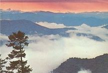 The Smokies...My Favorite Place / by Donna Neer