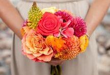 Bellas flores / Flores, flores lindas, flores bellas, arreglos florales
