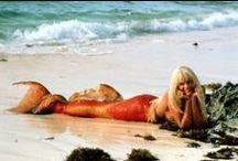 Mermaid / by Mary W