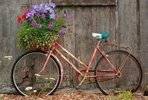 Garden Containers / Planters / by Denise Adams