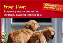Doggy Dictionary  / by Pup-Peroni®