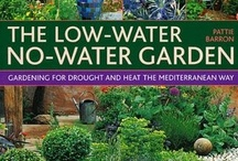 New england xeriscaping / Drought-tolerant plants to consider for my garden / by Tammy Lenski