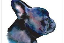 Violet the French Bulldog / French Bulldog love. Violet the French Bulldog. A therapy dog for Autism and Anxiety.