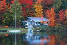 Cabin Fever & Lake Dreams / We just bought lake property for week-end getaways.   I can't decide between a bright white/colorful camp style cottage or a cozy cabin with not a lot of wood walls. We want to build small, but with lots of sleeping space for family, friends and our boys and all their friends. / by Michele Olson