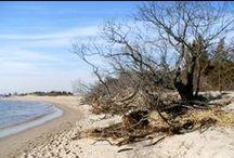 Sandy Hook, New Jersey / Photos I've taken of Sandy Hook.