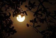amazing full moon!