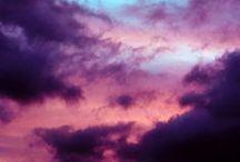 violetas violentas