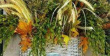 Seasonal Decorating - Autumn/Halloween