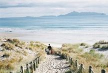 Pure New Zealand / The taste, texture and colours of home