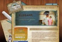 Our Favorite Website Designs
