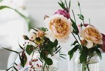 floral / by Vito Potato