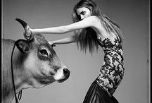 Editorial Style  / Fashion photography and editorials that tickle my fancy