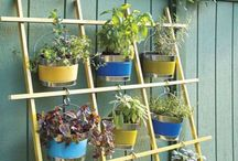 How Does Your Garden Grow? / Ideas for planting.